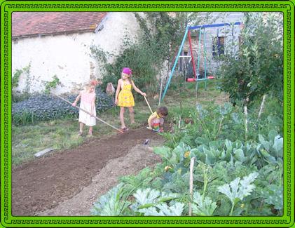 Info for Groenten tuin